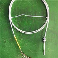 WZPM2-201端面热电阻