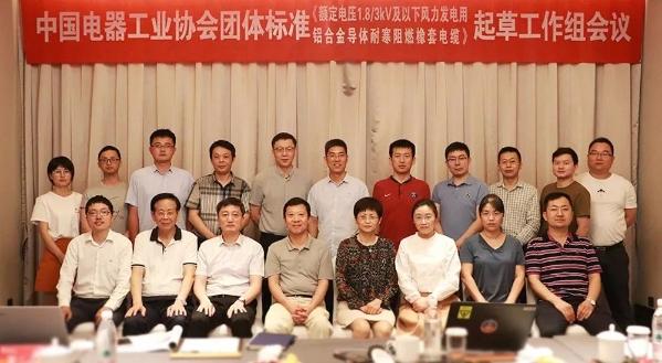 远东电缆主编的团体标准起草工作会议顺利举行