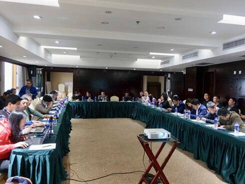 过程工业中电气和仪器仪表项目的文档类型起草会议召开