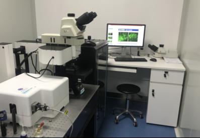 我国研制出双光子-受激发射损耗(STED)复合显微镜