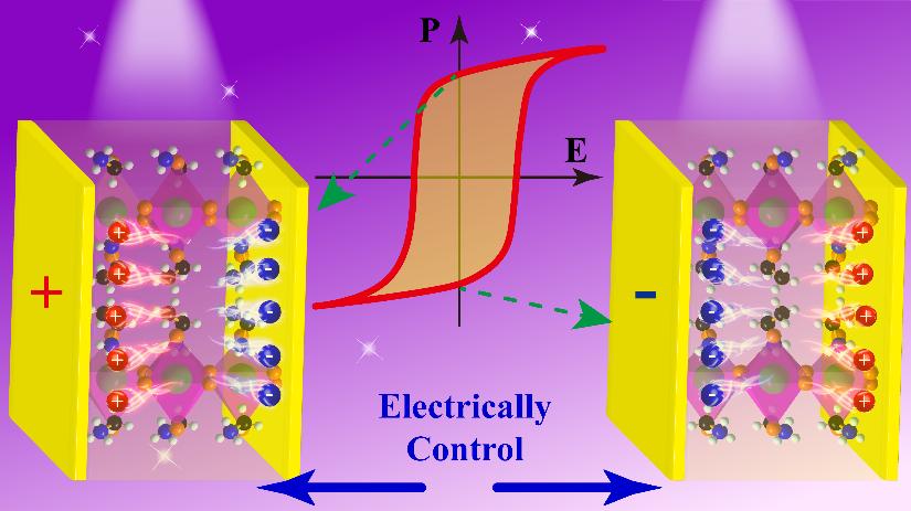 福建物構所自驅動光電探測鐵電晶體材料研究獲新進展