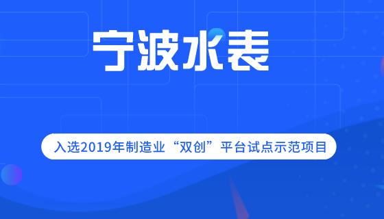 """寧波水表入選2019年制造業""""雙創""""平臺試點示范項目"""