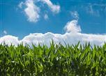 環境監測或將成為下一個千億規模的細分領域市場