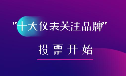 """2019年第五屆""""十大儀表關注品牌""""流量儀表投票入口已開通"""