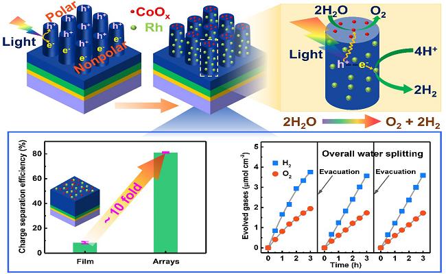 大連化物所揭示空間電荷分離促進光催化全分解水