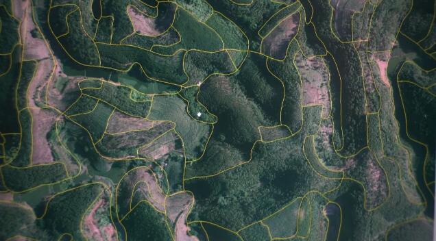 激光雷達技術助力國內森林資源監測與調查