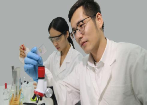 利用薄鈣鈦礦薄膜科學家找到提高電子器件性能新方法