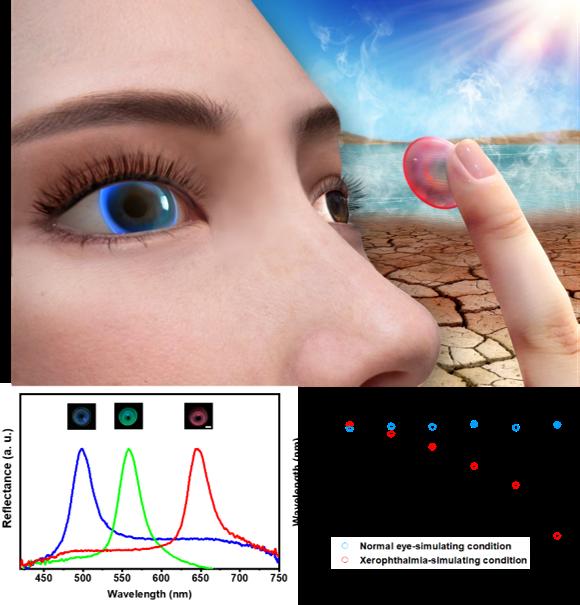 深圳先進院研發出用于眼疾示警的結構色隱形眼鏡傳感器