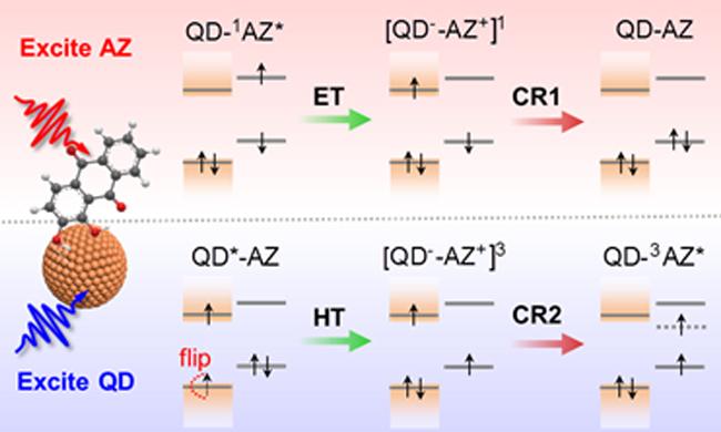 大連化物所揭示自旋調控的電荷復合路徑與動力學