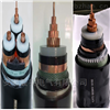 YJV22-26/35KV1*70成年人快猫软件破解版電纜
