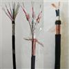 DJFPFP-300/500V-7*2*1.5計算機電纜